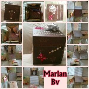 Marian Bv