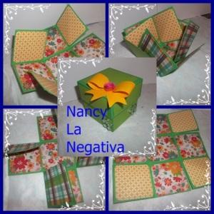 Nancy La Negativa