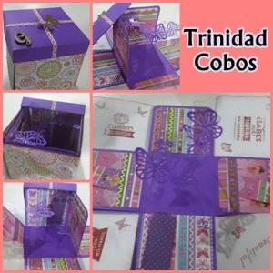 Trinidad Cobos
